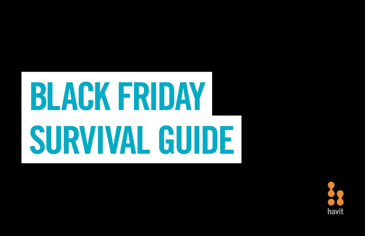 HAV-382-Black-Friday-mailer