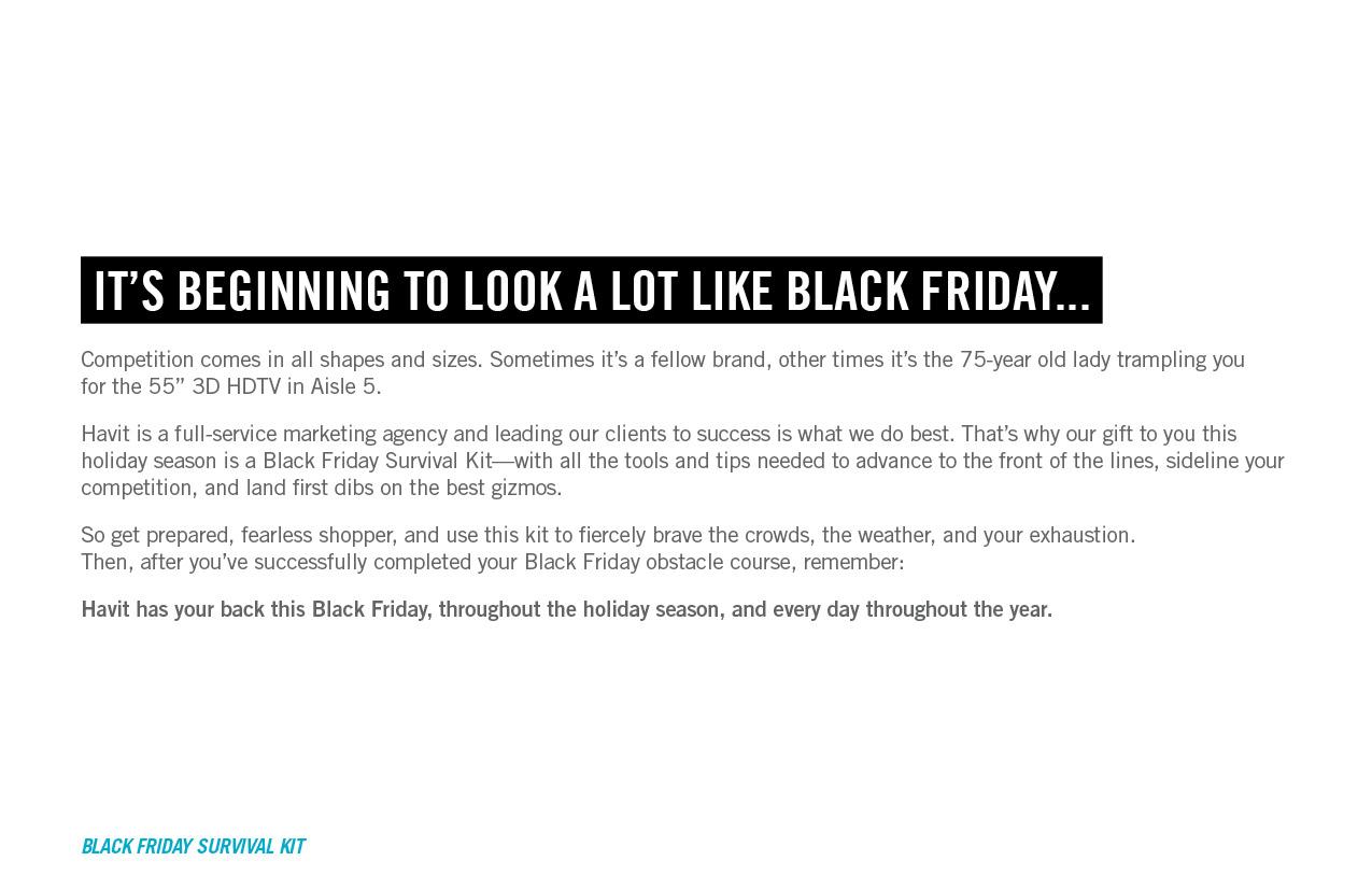 HAV-382-Black-Friday-mailer2